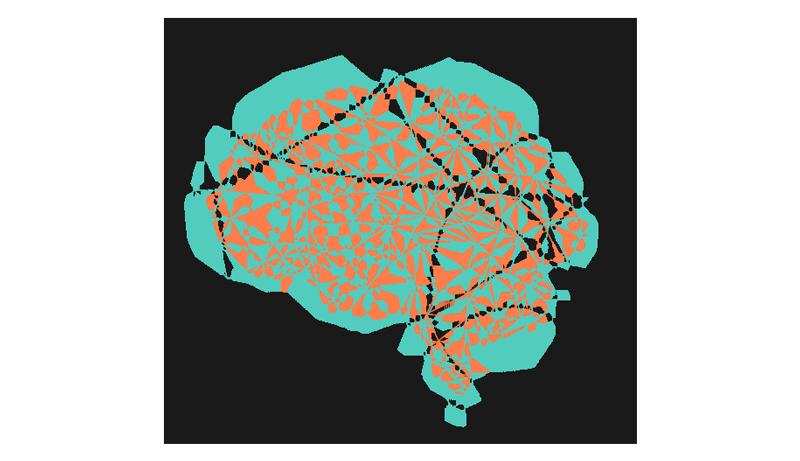 Hvad er en hjerne god til? Udnyt din hjernes styrker
